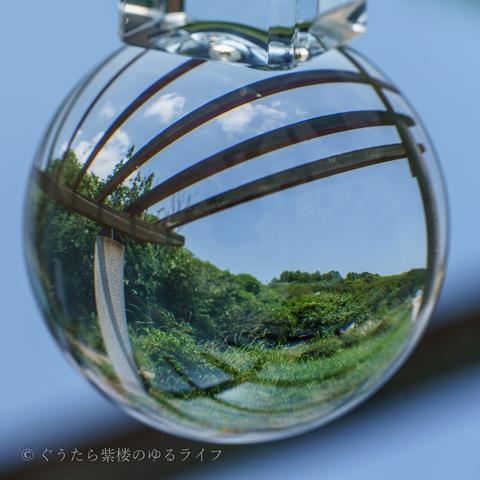 blog-06 (18 - 21).jpg